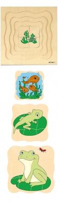 Vývojové puzzle žába