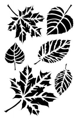 Šablona listy