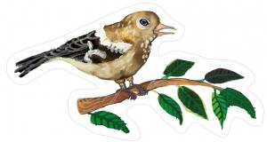 Nástěnná dekorace Pěnkava samička